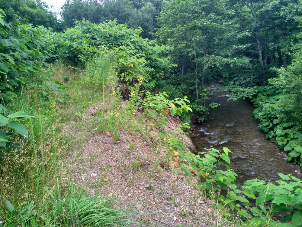 В одном месте речка основательно подмыла насыпь