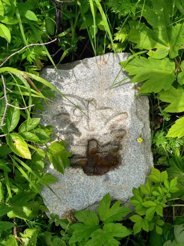 От самого храма остались только камни среди густой травы